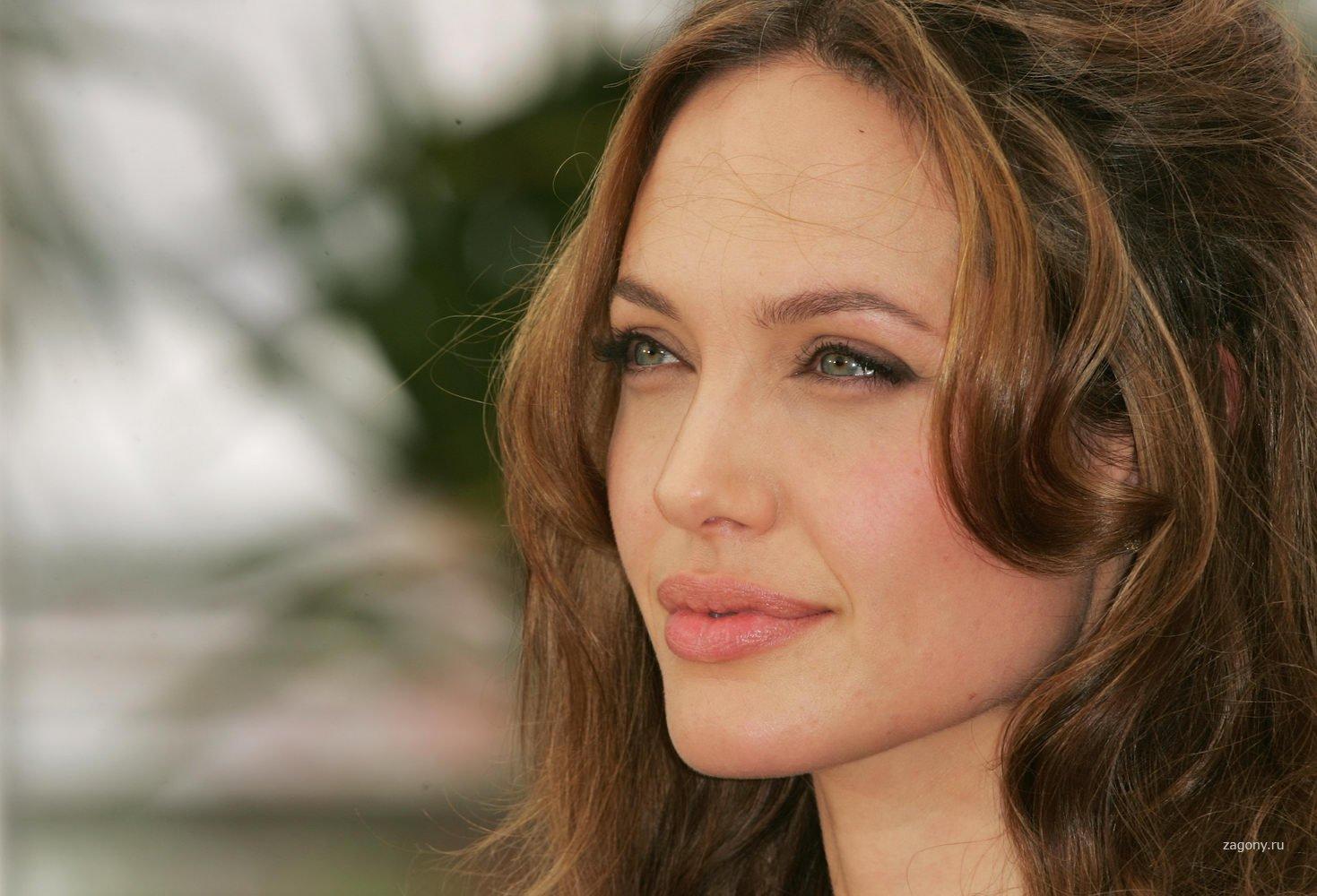 1236065018 5 - Анджелина Джоли